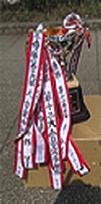 大台東 分館対抗スポーツ大会1